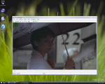 VLC media player - Windows Vista Beta 1